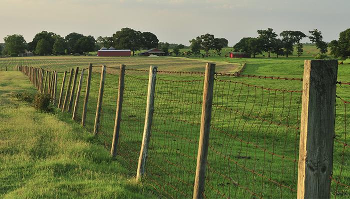 farm fence landscape